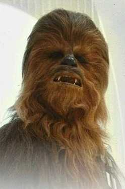 image of Chewbacca Sad