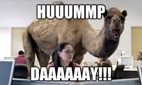 image of humpday