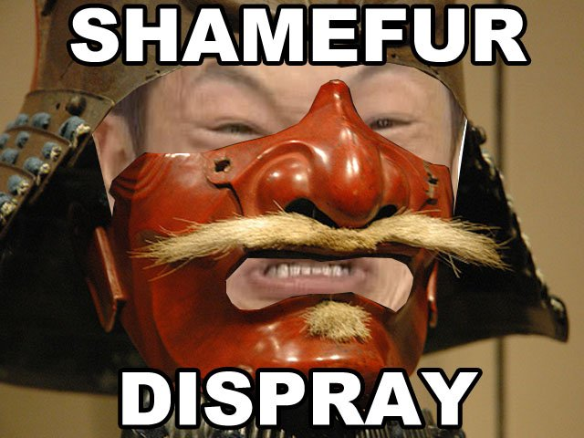 image of SHAMEFUR DISPRAY